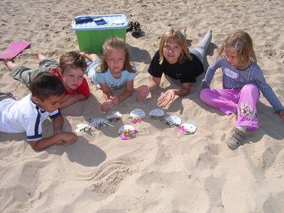 Naturpark Steinhuder Meer: Ferienprogramm für Kinder