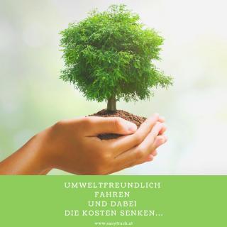 Umwelt und unser Beitrag dazu als Easytrack