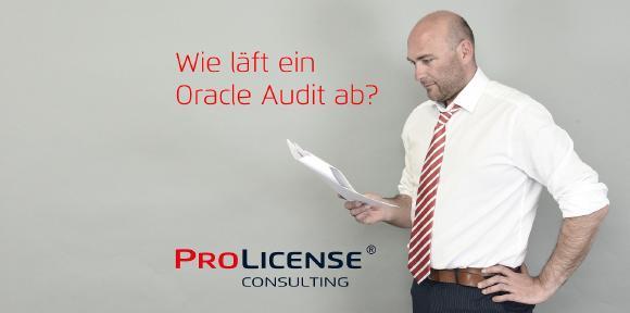 Wie läuft ein Oracle Audit ab.jpg