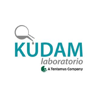 Laboratory KUDAM presents its new website