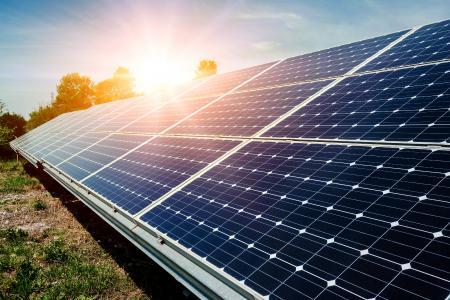Photovoltaik und Blumenwiese