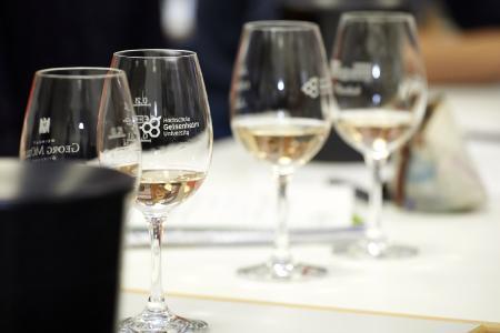 Weiterbildendes Fernstudium Management in der Weinwirtschaft (MBA), Bildquelle: Hochschule Geisenheim