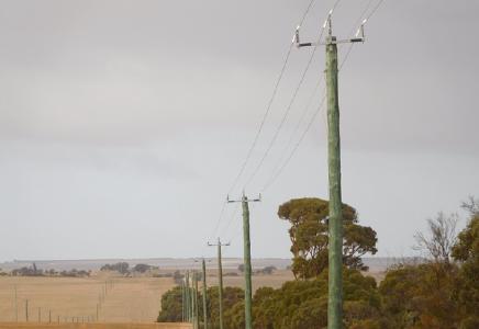 Stromleitung auf dem Cadoux-Projekt; Foto: FYI Resources