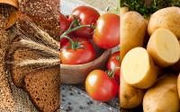 Alternaria Toxins in Food