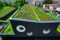 The future of the city is green - with innovative solutions!