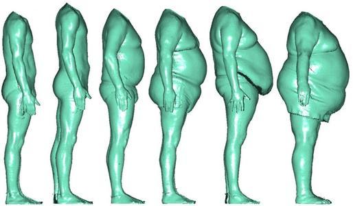 Die Körperproportionen verändern sich nicht linear zum Brustumfang / Bild: ©Hohenstein Institute