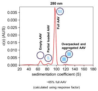 Figure 1: Analysis of capsid loading of AAVs using Analytical Ultracentrifugation (AUC)