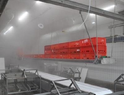 TGL Feuchtraumleuchten widerstehen in der Lebensmittelverarbeitung Dämpfen, Feuchte und Temperaturen von -25° bis +50°C, in der Hochtemperaturausführung TGL HT bis von -40°C bis +65°C