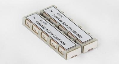ECHO-Microwave Wellenleiter-Filter
