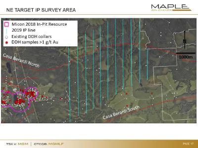 Fig. 1: OreVision IP survey lines covering potential eastern extension of the resource area, as well as additional targets to the NE along and near the Casa Berardi North fault. DDh samples >1 g/t Au projected vertically from hole trace