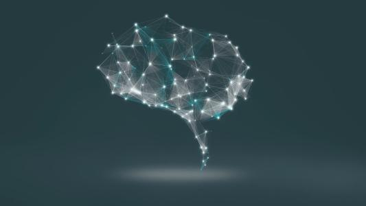 i-views vernetztes Gehirn