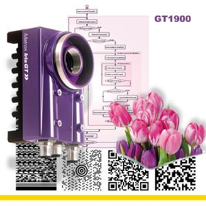 "Matrox Iris GT1900 is a 1600 x 1200 Pixel @ 15fps 1/1.8"" monochrome CCD"