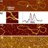 JPK reports on how graphenes are being studied using AFM to better characterize their properties at the Humboldt University in Berlin
