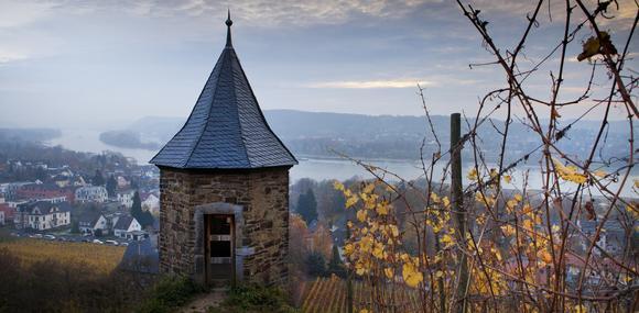 Der Rhein im Siebengebirge - Die Fotos von Ulrich Dohle zeigen, wie sehr die Region auch heute noch vom Weinbau geprägt ist.