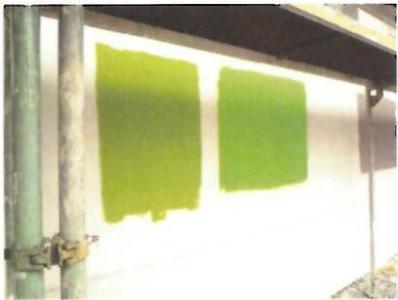 Probeanstriche für den Eingangsbereich: Die Entscheidung fiel zugunsten des Grüntons links / Foto: Caparol