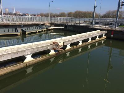 Anstoßbalken an Schleuse in Maasbracht (NL) nach Kollision mit einem Frachtschiff