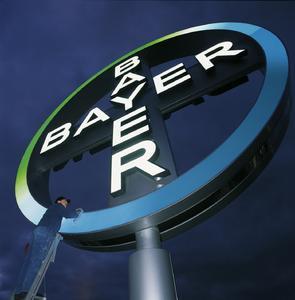 """Unter dem Namen """"Bayer Identity Net"""" präsentiert sich das BMS selbst im Look and Feel von Bayer"""