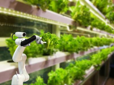 Digitalisation is increasingly important in the farming and foodstuffs industries. Photo: © itelligence AG
