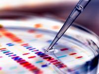 Gen-Technik und Gen-Food gehören zu den Forschungsbereichen, die viele Bundesbürger ängstigen. Foto: 3M / Getty Images / Andrew Brookes