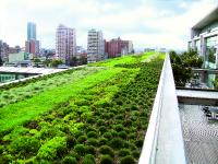 Green roofing - immensely valuable