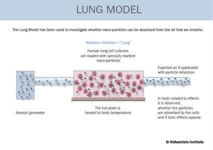 Mit Hilfe des Hohenstein-Lungenmodells wird untersucht, ob Nano-Partikel aus der Atemluft aufgenommen werden können.© Hohenstein Institute