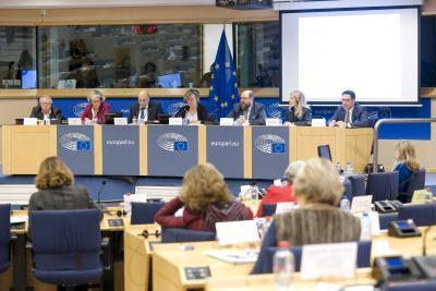 Weiterbildungsexperten beim CULT Ausschuss des Europäischen Parlaments