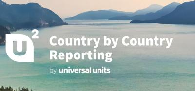 Service für Korrekturen von Country by Country Reports
