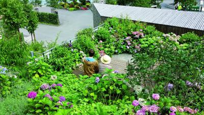Besonders während des Corona Shut Downs spürten die Menschen, wie wertvoll Grünräume in ihrer direkten Umgebung sind. Quelle: Kompetenzzentrum Gebäudebegrünung und Stadtklima e.V.