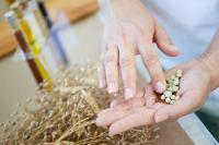 Das für die Herstellung der nachhaltigen Holzlasuren benötigte Leindotteröl wird nach der Ernte der aus dem Leindotter-Erbse-Mischfruchtanbau gewonnenen Samen weiterverarbeitet.