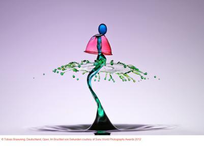 Copyright Tobias Braeuning, Deutschland, Open, Im Bruchteil von Sekunden courtesy of Sony World Photography Awards 2012