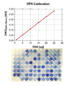 Fig. 3 DNA calibration curve and prepared 96-well plate (below) from a DPA assay of BMC samples.