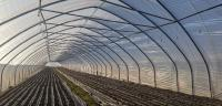 Horticulture Greenhouses can be repaired with ETFE adhesive tape CMC 77700