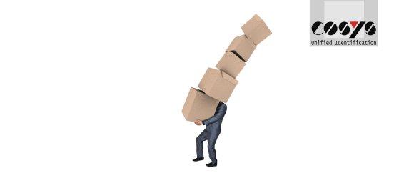 Postverteilung Software gegen Paketberge