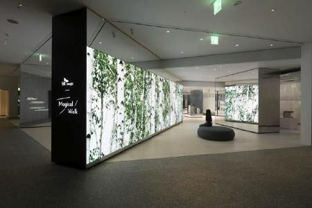 The Forest Zone: A ten-metres long two-sided LED wall visualizes changing lively perspectives of a Korean mountain forest / copyright: D'art Design Seoul Ltd.