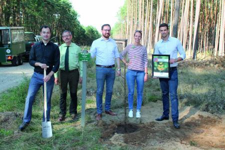 Gemeinsam pflanzten Vertreter von Piepenbrock und der Linde AG den 50000. Baum im Piepenbrock-Forst / Bild: Piepenbrock Unternehmensgruppe GmbH + Co. KG