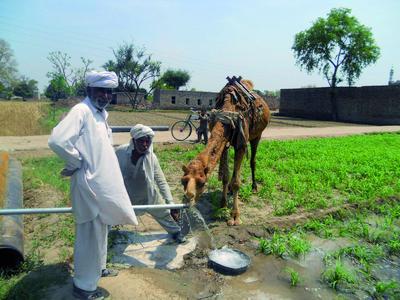 Phaesun-Projekt Pakistan: Viehtränke betrieben mit solarem Pumps...