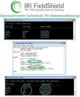 IRI FieldShield ist ein robustes Startpunkt Datensicherheits-, Datenschutzgesetz- und Testdaten-Bereitstellungspaket, das personenbezogene Daten (PII) in mehreren Datenbanktabellen und strukturierten (Flat-File oder komprimierten) Dateiformaten - vor Ort oder in der Cloud, statisch oder als Streaming - mit einer oder mehreren Datenmaskierungsfunktionen findet, klassifiziert und konsistent abschirmt.