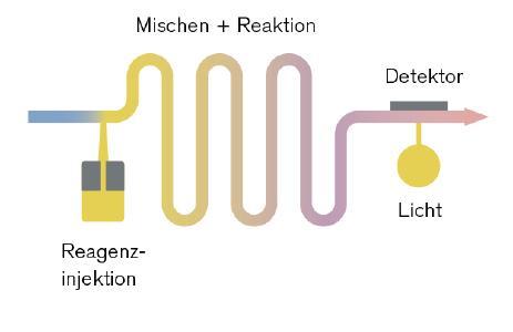 Mikrofluidisches FIA-Modul zur Bestimmung des Eisengehaltes. Damit kann die Fließinjektionsanalyse erstmals als Feldgerät eingesetzt werden / Quelle: Bürker