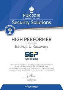 Urkunde für SEP als High Performer im PUR-S - Backup and Recovery 2018 von techconsult, Quelle: techconsult GmbH