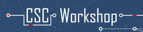 Logo CSC Workshop