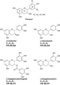 Abb. 4 Strukturen der Catechine