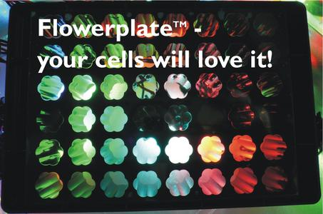 Flowerplate Cells will love it