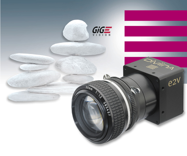 Machine-Vision Line-Scan-Cameras with GigE-Vision-Interface - Low-Cost DiViiNA-LM1