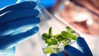 Is Plant-based Biologics Market Trapped Between Growth Expectations And Uncertainty?