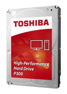 3.5HDD P300