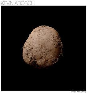 Das 15.teuerste Foto zeigt eine Kartoffel