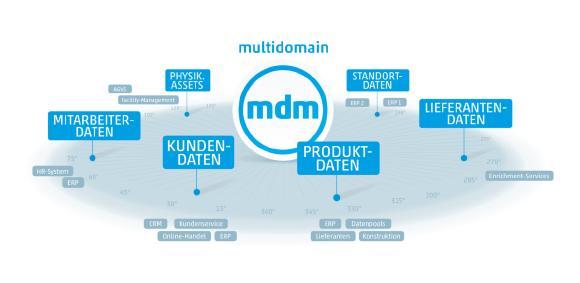 Multidomain Master Data Management Grafik