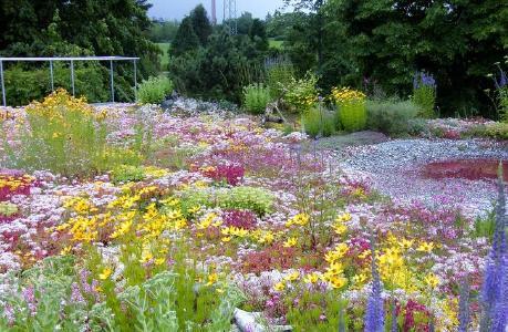 Optigrün Akademie: Biodiversität