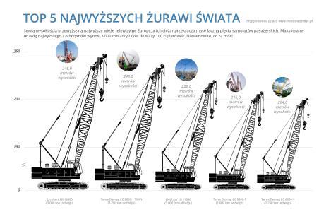 Infografik - Top 5 najwyższych żurawi świata