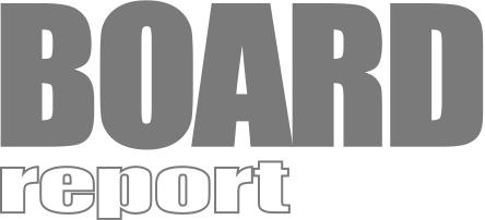 BoardReport Logo Dr Wuertele Information